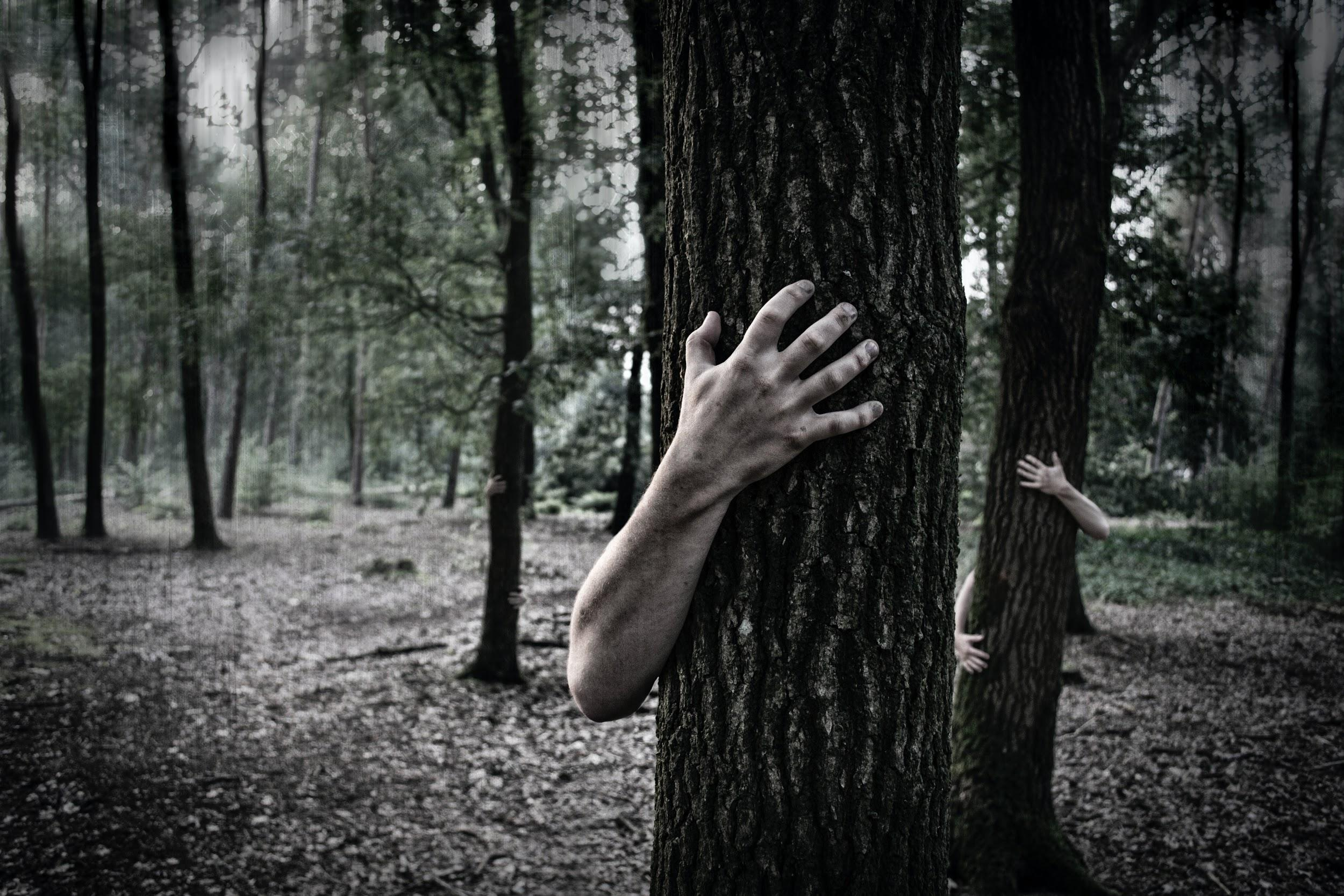 Scary dark forest with human hands on the trees