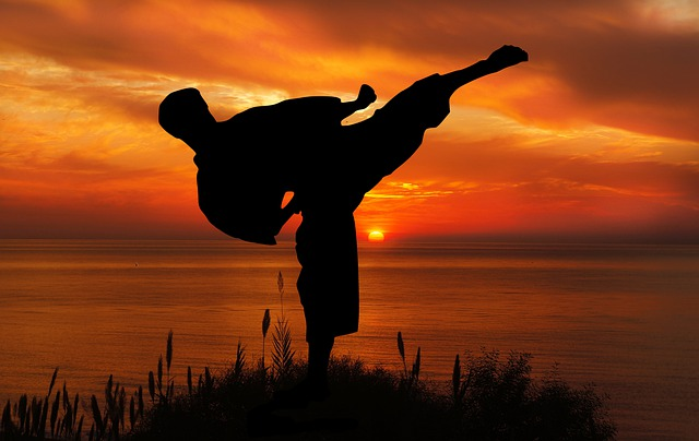 The silhouette of a boy practicing karate in the sunset