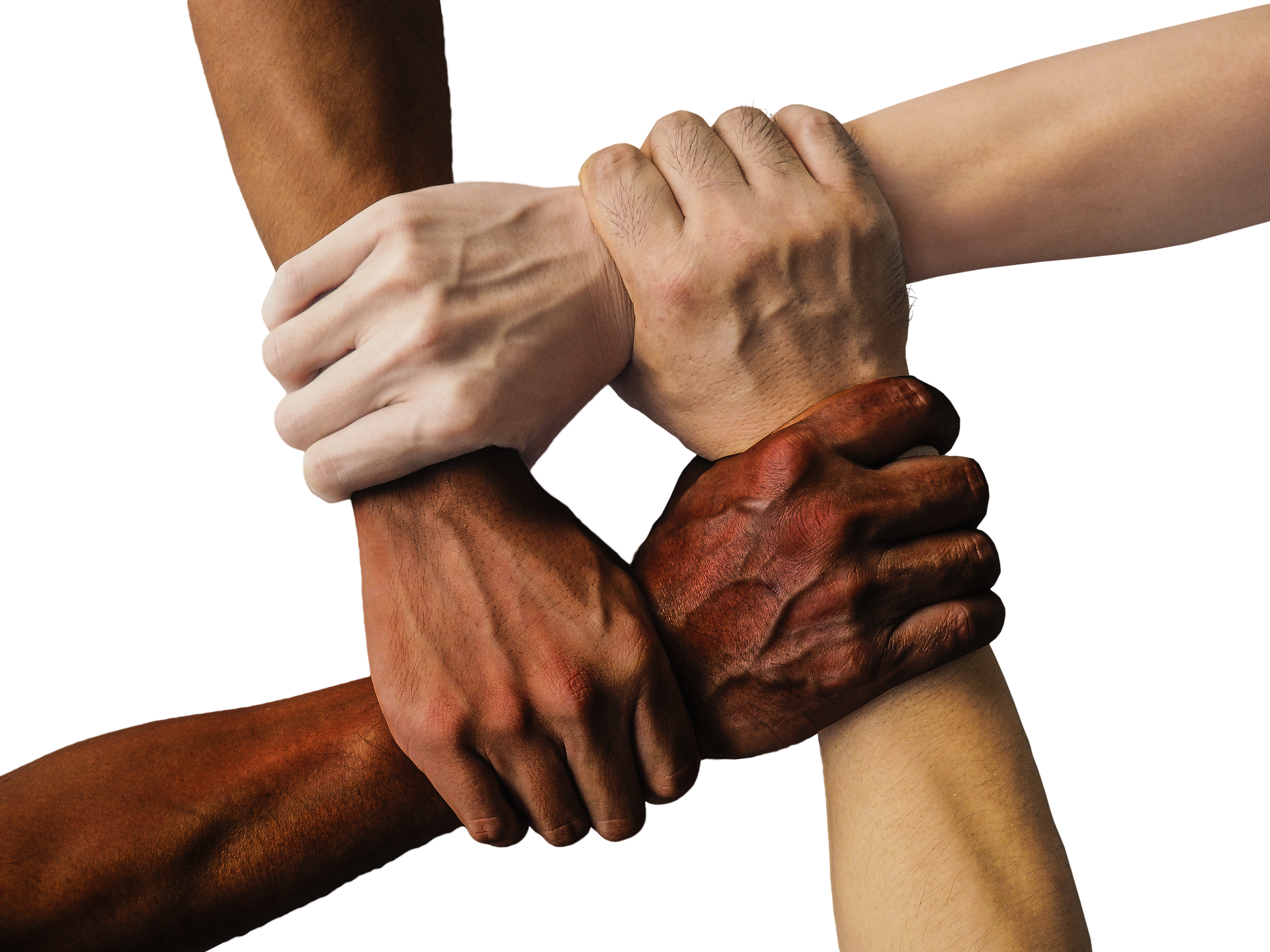 text: brown, pale, black, white skin colored hands grabbing the wrists, joining to each other